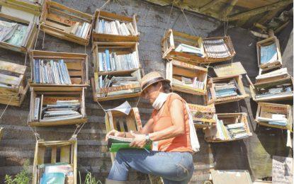 La biblioteca campesina de El Gallo
